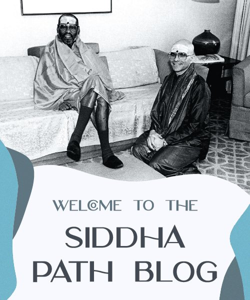 Welcome to the Siddha Path Blog with The Ashram Mt Eliza